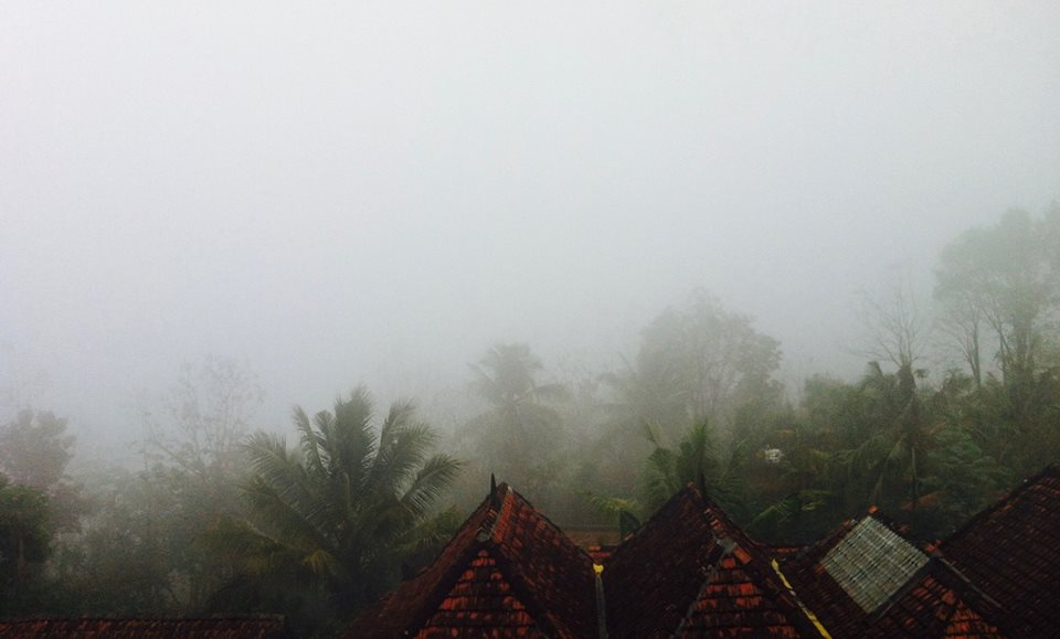 Image caption: Bumi Langit, Morning After The End Of Dry Season